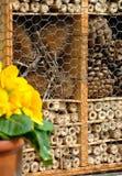 Hotel del insecto Foto de archivo libre de regalías