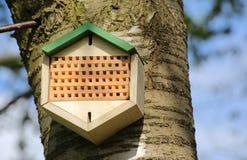 Hotel del insecto instalado en un manzano Foto de archivo libre de regalías