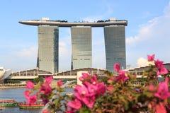 Hotel di Marina Bay Sands e delle orchidee, Singapore Fotografia Stock