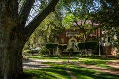 Hotel di parco di Sunnyside - Johannesburg Immagine Stock
