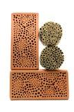 Hotel do inseto para abelhas e insetos selvagens das vespas imagens de stock royalty free