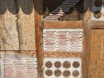 Hotel do inseto para abelhas selvagens Imagem de Stock