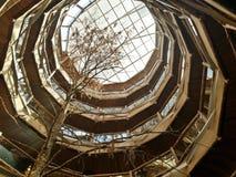 Hotel do Nothofagus Imagens de Stock