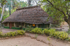 Hotel en selva Fotos de archivo