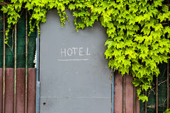Hotel entrance door with sign in a fence with green foliage Royalty Free Stock Photography