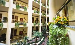 A hotel garden. A green hotel garden indoors Royalty Free Stock Photo