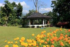 Garden,Pokhara, Nepal stock photo
