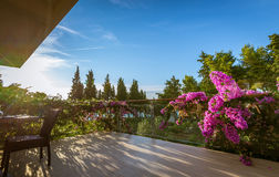 Hotel garden and terrace. Luxury mediterranean hotel garden with flowers Royalty Free Stock Image