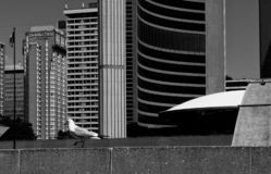 `hotel guest` flying in to Toronto`s downtown area royalty free stock image