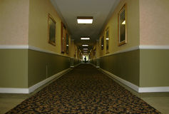 Hotel Hallway. Low Wide Angle of Hotel Hallway royalty free stock photography
