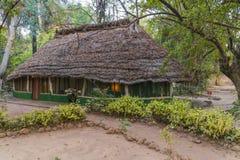 Hotel im Dschungel stockfotos