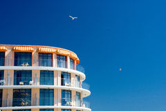 Hotel projected over blue sky. Hotel projected over blue summer sky circled by seagulls Stock Image