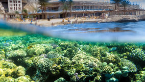 Hotel and Reef. Over-Under Photo of Hotel Reef in Sharm el Sheikh, Red Sea, Egypt Stock Photography