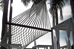 Hotel resort outdoor with hammock under palm trees Royalty Free Stock Photography