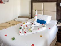Hotel room in Egypt, funny swan royalty free stock photos