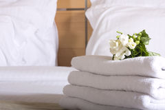 Hotel room and flowers Royalty Free Stock Photos