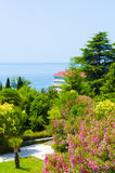 Hotel by the sea. Surrounded by beautiful trees Stock Photos