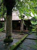 Hotel selecto tropical del estilo de Bali foto de archivo libre de regalías