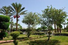 Hotel. Sharm-El-Sheikh. Stock Image