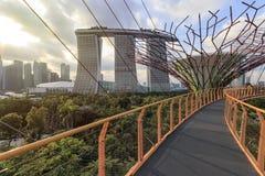 Hotel Supetree Grove und Marina Bay Sandss an den Gärten durch die Bucht in Singapur stockfotografie