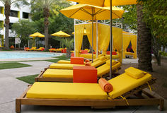 Hotel Swimming and Wading Pool. Very colorful chaise lounges and umbrellas surround a modern desert hotel resort pool Royalty Free Stock Images