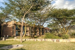 Hotel in Tansania mit Akazien Lizenzfreie Stockfotos