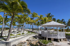 The hotel territory with palm trees on the beach. Royalty Free Stock Photography