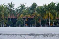 Hotel-tropisches gestaltet durch Palmen und weißen Sand lizenzfreies stockfoto