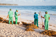 Hotel workers engaged in cleaning the beach Royalty Free Stock Image