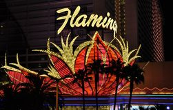 Hotel y casino - Las Vegas, los E.E.U.U. del flamenco Foto de archivo libre de regalías