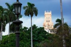 Hotel z palmą obrazy royalty free