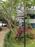 Hotelgarten in Jakarta stockfotos