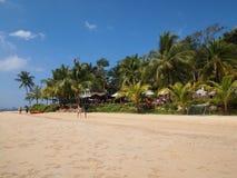 Hotell bland palmträd på stranden royaltyfri fotografi