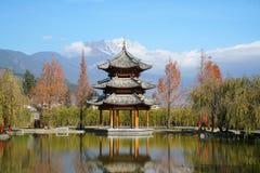 Hotell för Banyanträd i Lijiang Arkivfoto