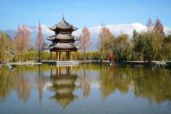 Hotell för Banyanträd i Lijiang Arkivbilder