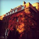 Hotell Oslo Norvegia Fotografie Stock Libere da Diritti
