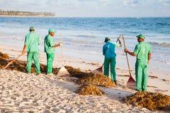 Hotellarbetare som är förlovade, i att göra ren stranden Royaltyfri Bild