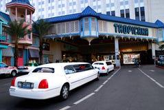 hotelllaslimousine utanför tropicanaen vegas Arkivfoto