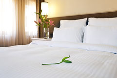 Hotellsäng arkivfoto