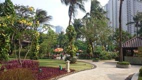 Hotellträdgård i Jakarta Arkivfoto