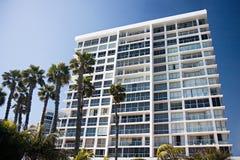 hotelowe palmy obraz stock