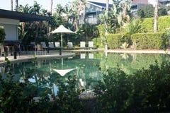 Hotelowego kurortu pływacki basen z ogródem Fotografia Royalty Free