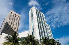 Hotelowi budynki z drzewkami palmowymi w Miami, usa obraz stock