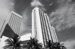 Hotelowi budynki z drzewkami palmowymi w Miami, usa obrazy royalty free