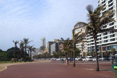 Hotels and Palm Trees Lining Durban's Golden Mile, South Africa Royalty Free Stock Image
