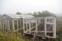 A hothouse in the fog in the morning Stock Image
