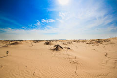Hotizon do deserto Imagem de Stock