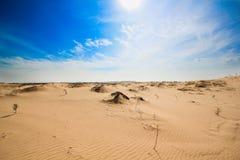 Hotizon pustynia Obraz Stock