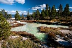 Hotspring Yellowstone Στοκ φωτογραφίες με δικαίωμα ελεύθερης χρήσης