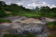 Hotsprings i mudpots między roślinnością Uzon kaldera Zdjęcie Royalty Free